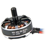 WALKERA (HM-F210-Z-21) Brushless Motor (CW)(WK-WS-28-014A)