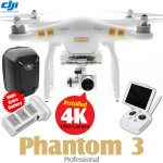 DJI Phantom 3 Professional + Extra Battery + Part 50 Hardshell Backpack Combo (Phantom logo)